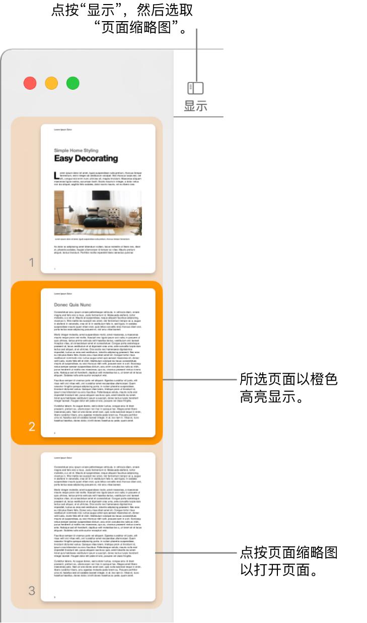 "Pages 文稿窗口左侧的边栏中""页面缩略图""视图已打开,所选页面高亮显示为深橙色。"