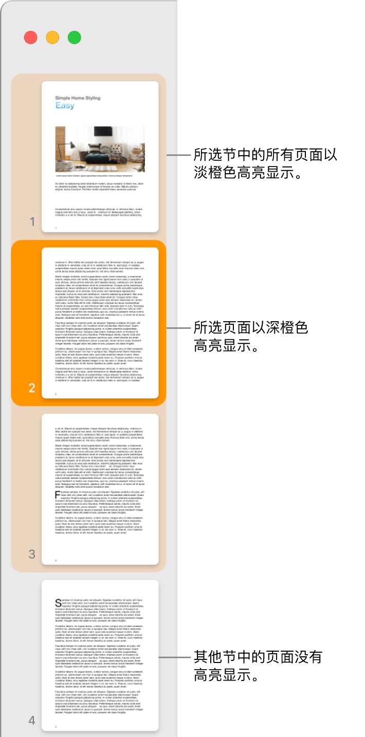 """""""缩略图视图""""边栏,带有以深橙色高亮显示的所选页面以及以浅橙色高亮显示的所选节中的所有页面。"""