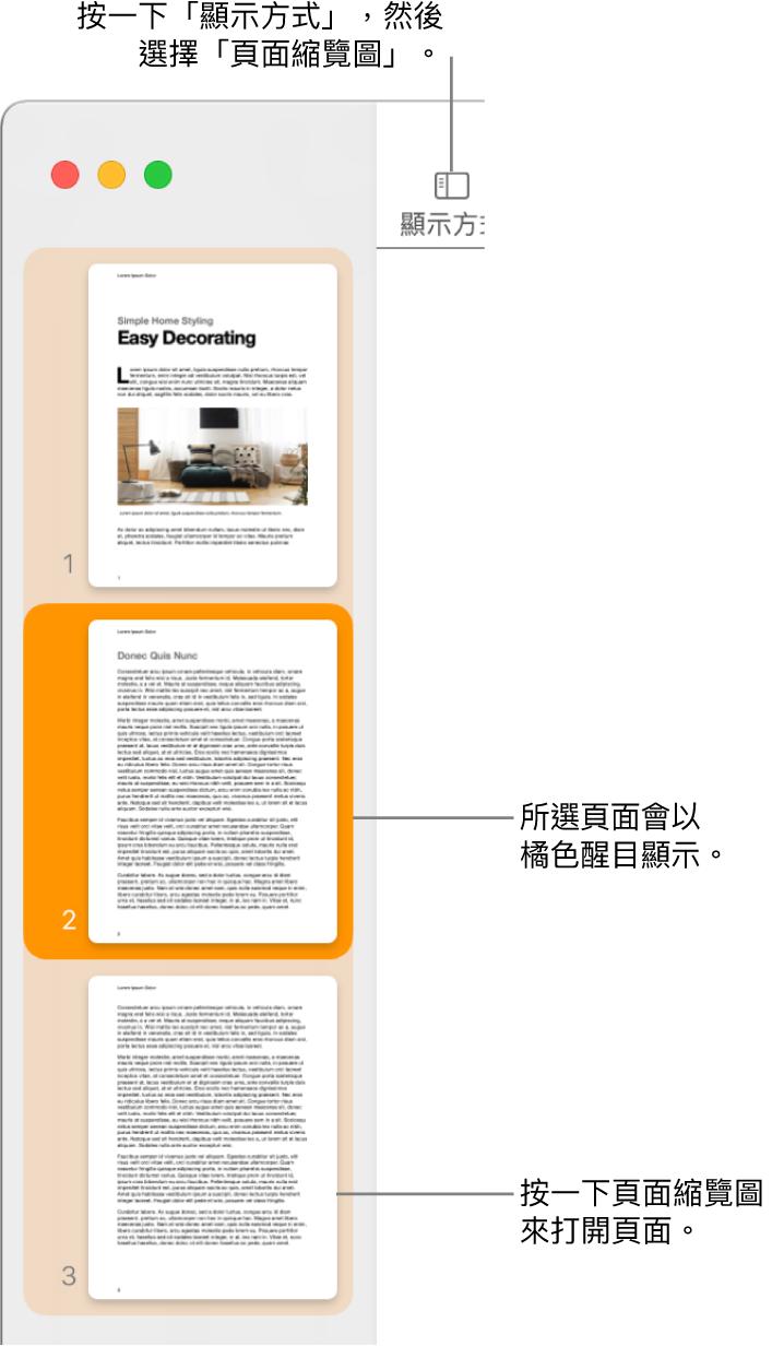 Pages 視窗左側的側邊欄中打開了「頁面縮覽圖」顯示方式,所選取的頁面以深橘色反白顯示。