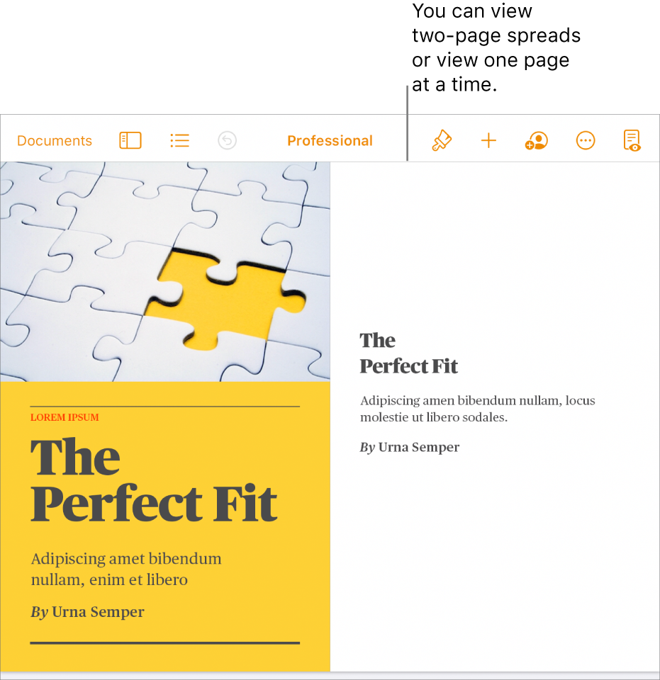 A document with pages viewed as two-page spreads.