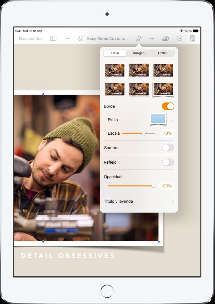 Los controles Formato para cambiar el tamaño y la apariencia de la imagen seleccionada. Los botones Estilo, Imagen y Orden se sitúan a lo largo de la parte superior de los controles.