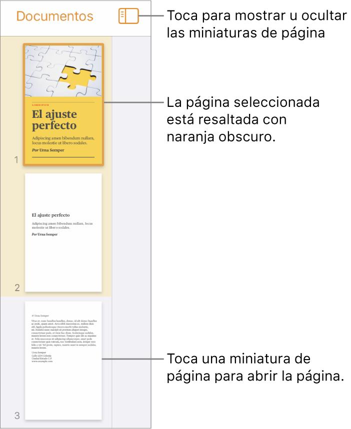 """La visualización """"Miniaturas de página""""s en el lado izquierdo de la pantalla, con una página seleccionada. El botón """"Opciones de visualización"""" está arriba de las miniaturas."""