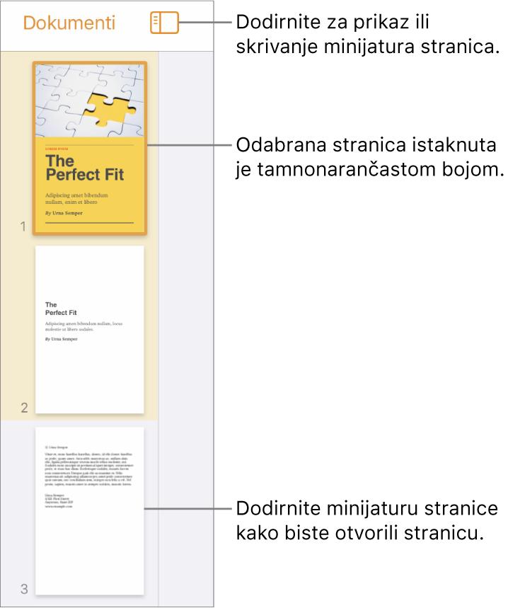 Prikaz minijatura stranica s lijeve strane zaslona s jednom odabranom stranicom. Tipka Opcije prikaza nalazi se iznad minijatura.