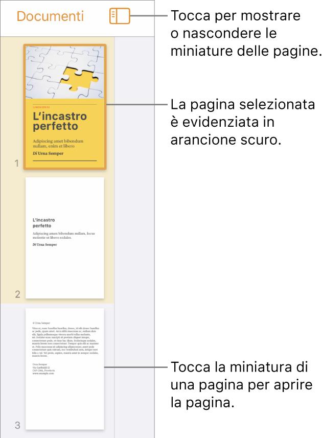 """Vista """"Miniature pagina"""" sul lato sinistro dello schermo, con una pagina selezionata. Pulsante """"Opzioni visualizzazione"""" che si trova sopra le miniature."""