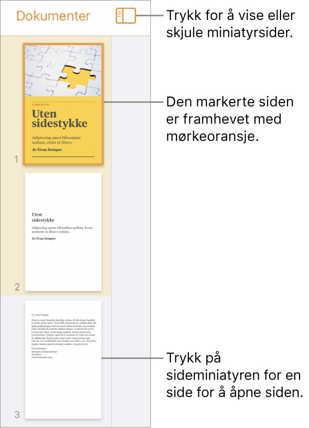 Sideminiatyrvisning på venstre side av skjermen med én side markert. Visningsvalg-knappen er over miniatyrene.
