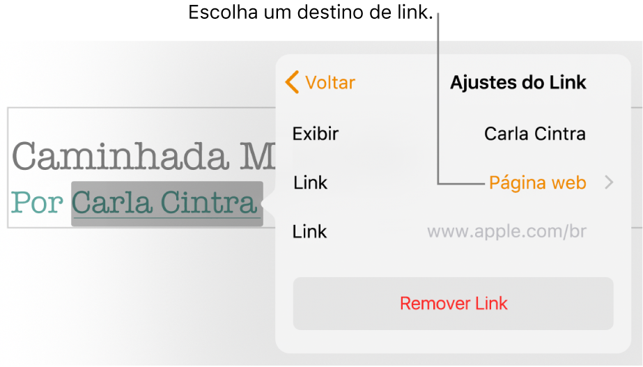 """Controles de """"Ajustes do Link"""" com o campo Exibir, Link (definido como Página web) e o campo Link. O botão Remover Link está na parte inferior dos controles."""