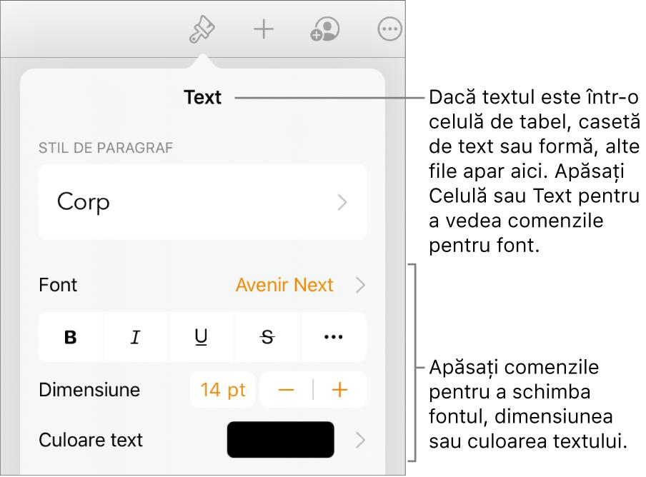 Comenzi text din meniul Format pentru configurarea paragrafelor și a stilurilor, fonturilor, dimensiunii și culorii caracterelor.