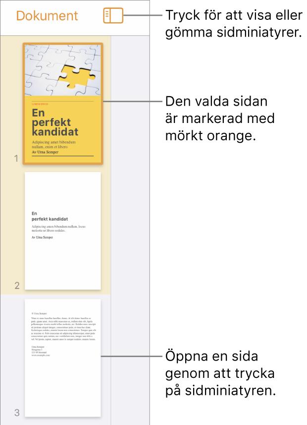 Sidminiatyrvyn till vänster på skärmen med en markerad sida. Ovanför miniatyrerna finns knappen Visningsalternativ.