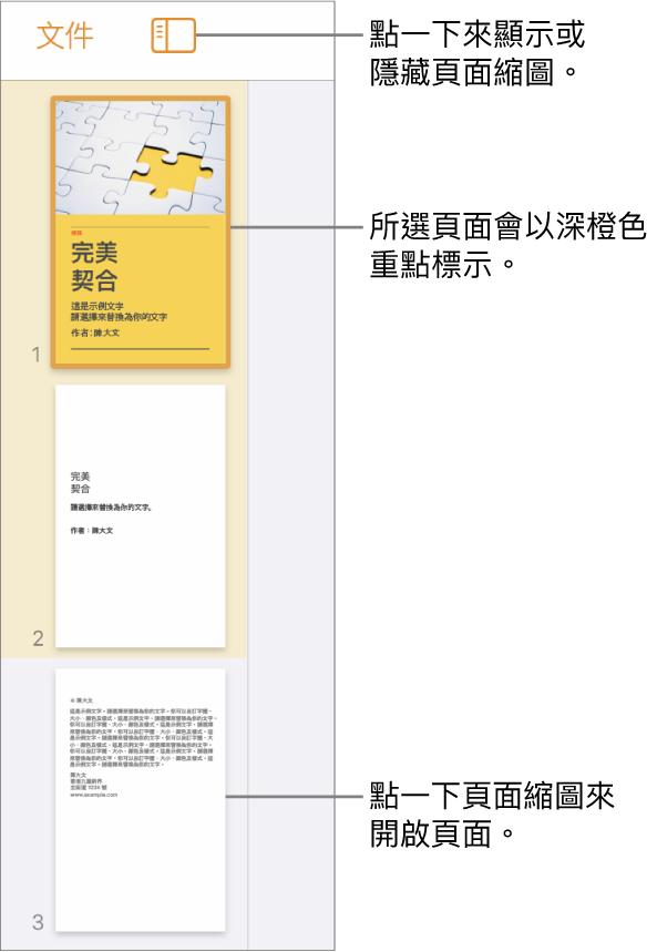 螢幕左側的「頁面縮圖」顯示方式,已選擇一個頁面。「顯示方式選項」按鈕位於縮圖上方。