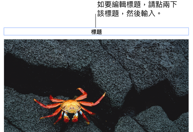 標題説明,「標題」在相片下方顯示,標題欄位周圍顯示藍色外框代表其已被選取。