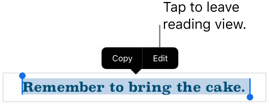A sentence is selected, and above it is a contextual menu with Copy and Edit buttons.