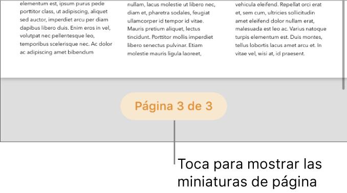 Un documento abierto con numeración de página en la parte inferior de la pantalla.