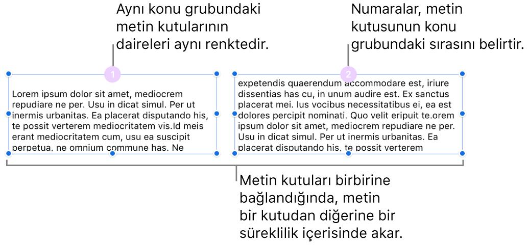 En üstte içinde 1 ve 2 sayıları olan mor daireli iki metin kutusu.