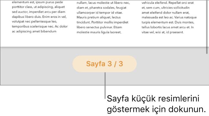 Ekranın alt ortasında sayfa numarası düğmesi açık bir belge.