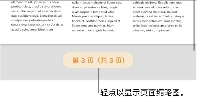 打开的文稿,屏幕底部中间带有页码按钮。