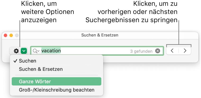 """Das Fenster """"Suchen & Ersetzen"""" mit Beschriftungen für die Taste, mit der Optionen zum Suchen, zum Suchen und Ersetzen, zum Suchen ganzer Wörter und zum Suchen unter Berücksichtigung der Groß-/Kleinschreibung eingeblendet werden können. Mit den Pfeilen auf der rechten Seite kann zu den vorherigen bzw. nächsten Suchergebnissen gesprungen werden."""