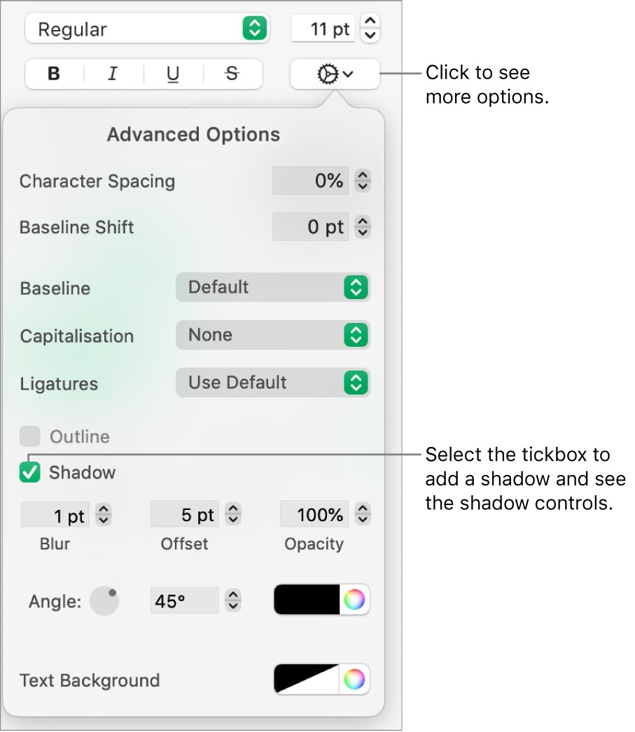 The Advanced Options menu open with the Shadows tickbox selected and controls for setting blur, offset, opacity, angle and colour.