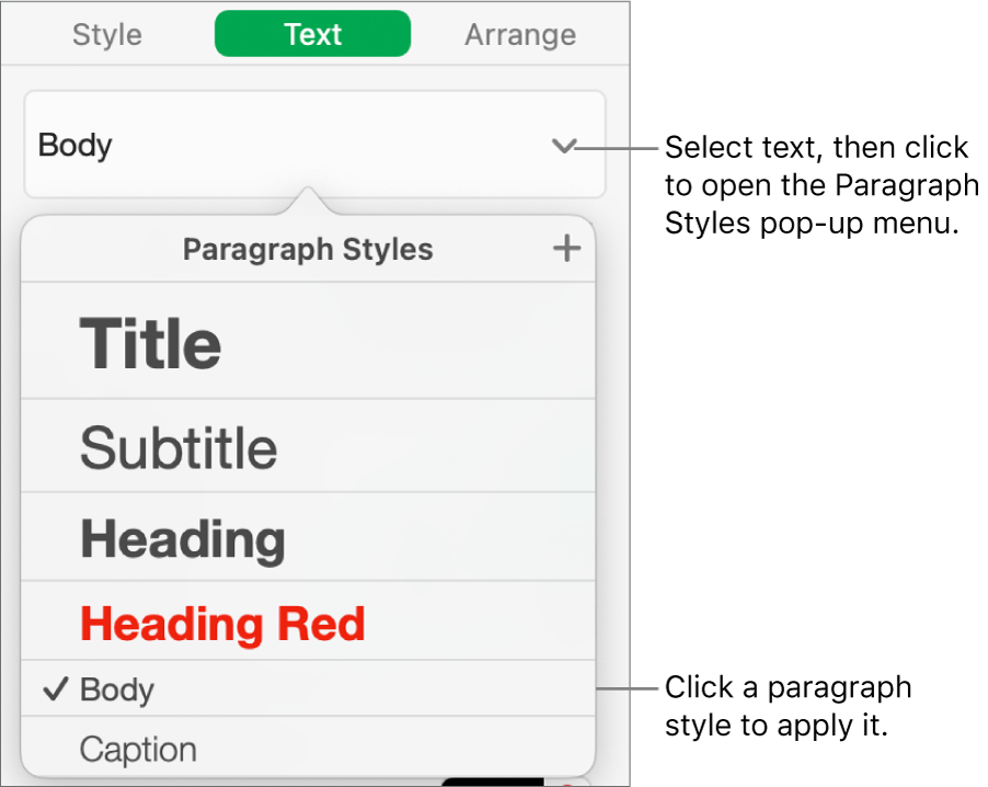 The Paragraph Styles menu with a tick next to the selected style.