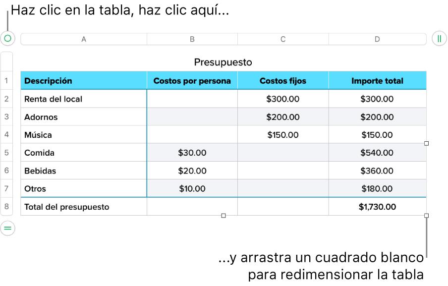 Una tabla seleccionada con cuadrados blancos para redimensionarla.
