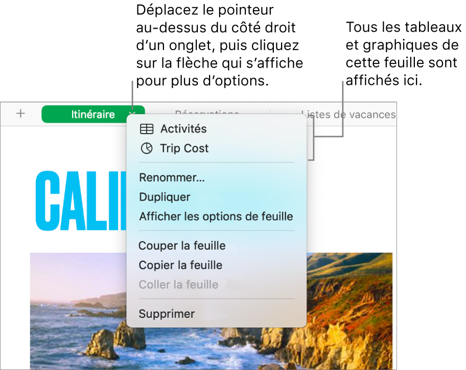 Un onglet d'une feuille de calcul avec le menu contextuel ouvert affichant des options, notamment Dupliquer.