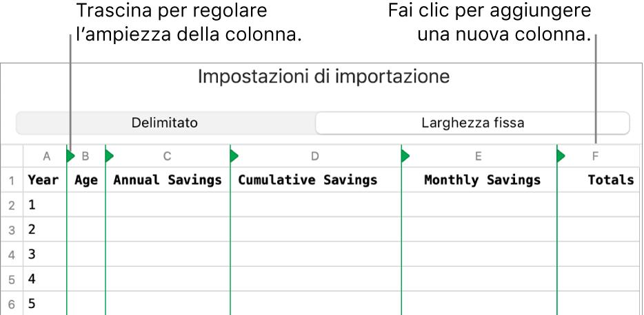 Impostazioni di importazione per un file di testo a larghezza fissa.