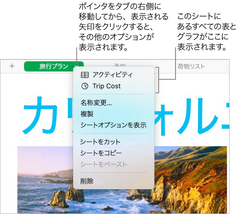 スプレッドシートタブのショートカットメニューが開き、「複製」を含む複数のオプションが表示された状態。