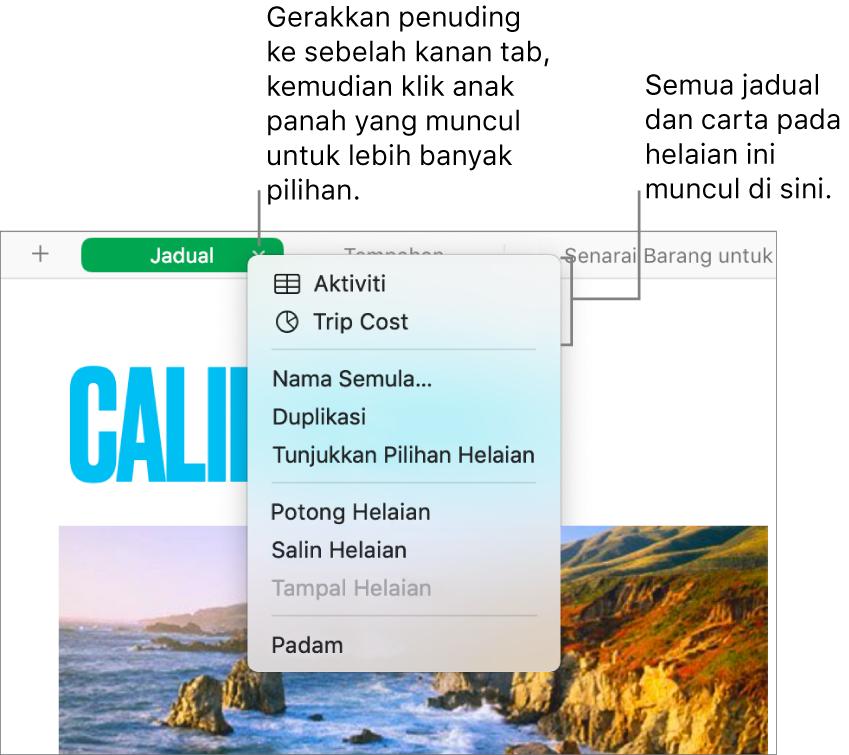 Tab hamparan dengan menu pintasan terbuka, menunjukkan pilihan termasuk Duplikasi.