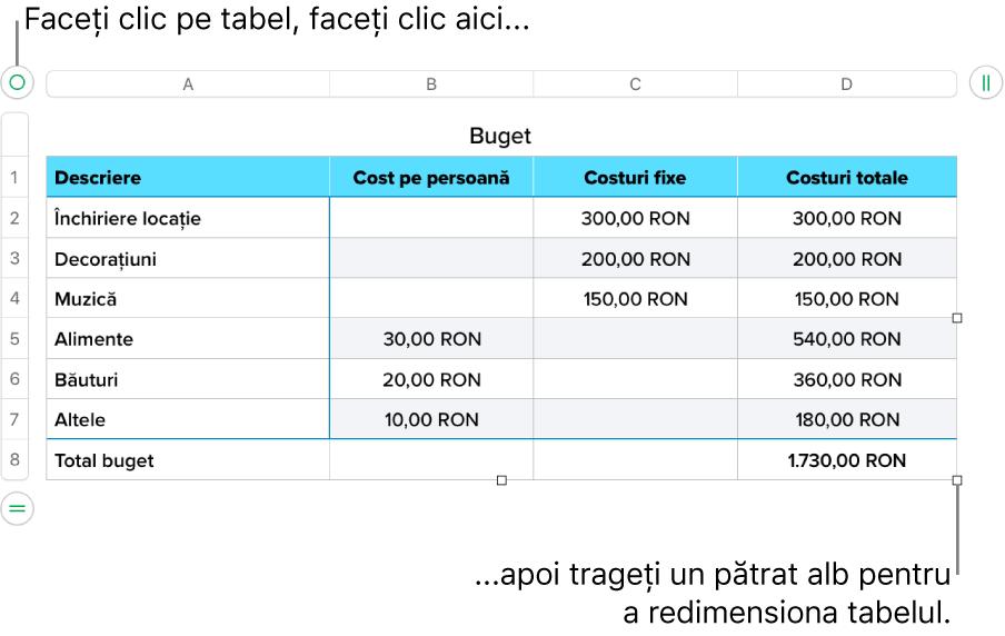 Un tabel selectat, cu pătrate albe pentru redimensionare.