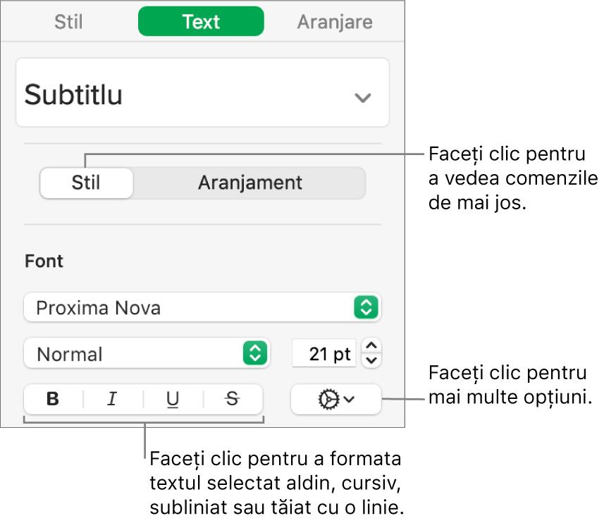 Comenzile pentru Stil din bara laterală cu explicații la butoanele Aldin, Cursiv, Subliniat și Tăiat cu o linie.