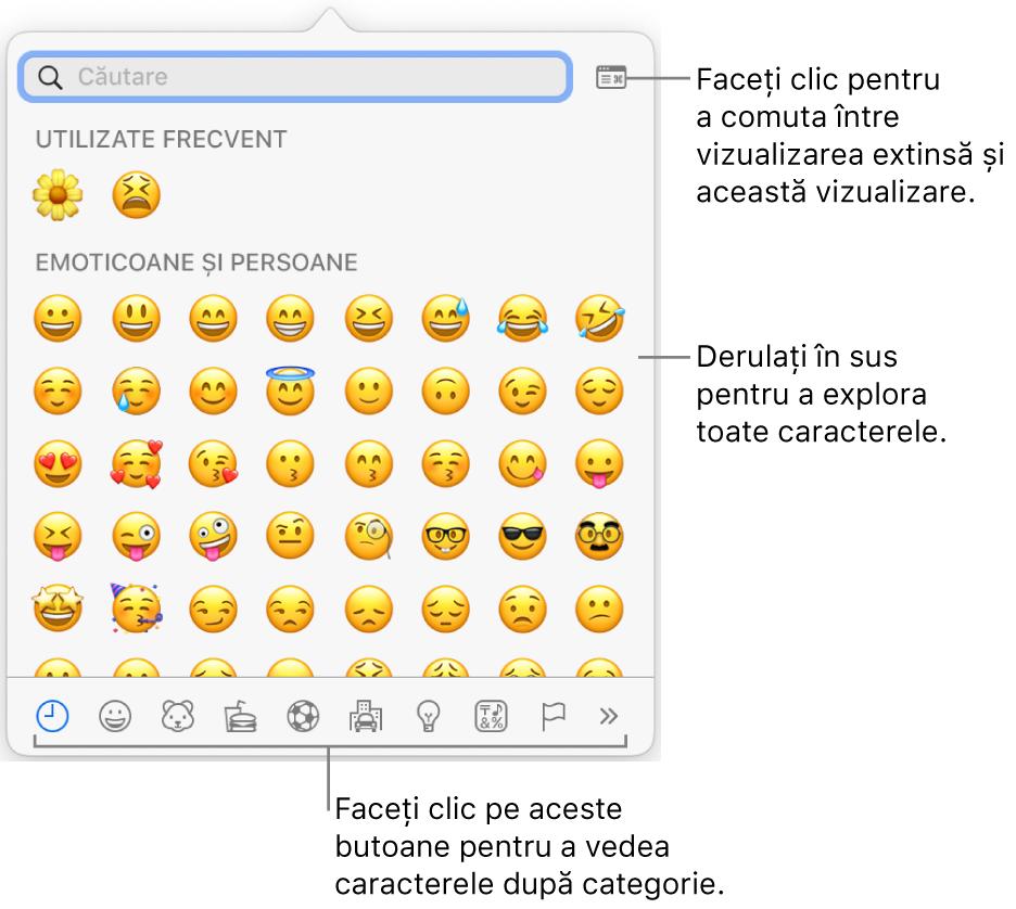 Fereastra pop-up Caractere speciale afișând emoticoane, butoane pentru diferite tipuri de simboluri în partea de jos și o explicație pentru un buton care afișează fereastra completă Caractere.