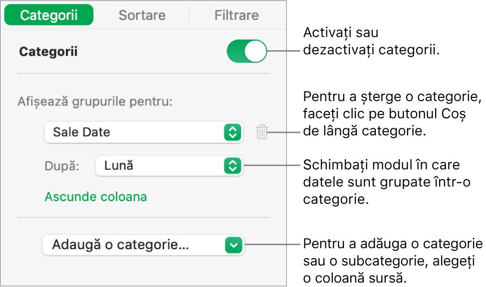 Bara laterală categorii cu opțiuni pentru a dezactiva categoriile, șterge categoriile, regrupa datele, ascunde o coloană sursă și a adăuga categorii.