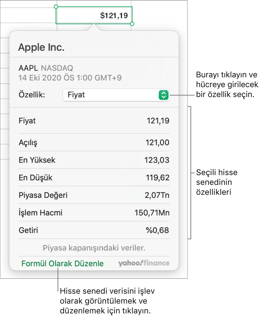 Seçilen hisse senedi Apple olmak üzere hisse senedi özelliği bilgilerinin girildiği sorgu kutusu.