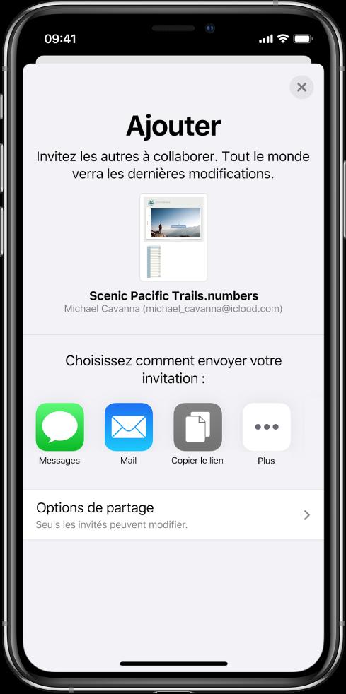 L'écran «Ajouter des personnes» avec l'image de la feuille de calcul à partager. On trouve en dessous les différents boutons pour envoyer l'invitation, y compris Messages et Mail, Copier le lien et Plus. Le bouton Options de partage se trouve en bas.