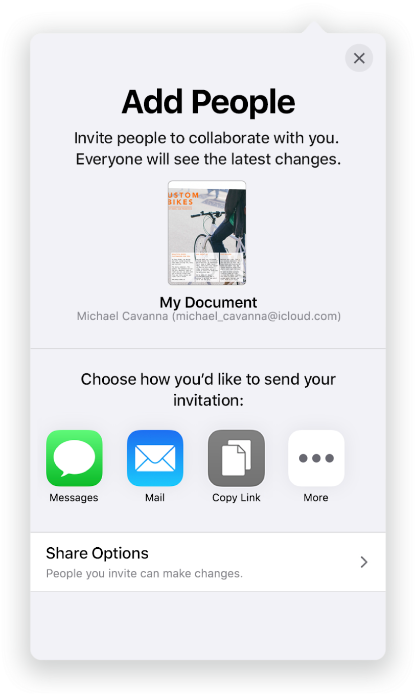 The Add People screen showing a picture of the spreadsheet to be shared. Below it are buttons for ways to send the invitation, including Mail, Copy Link and More. At the bottom is the Share Options button.