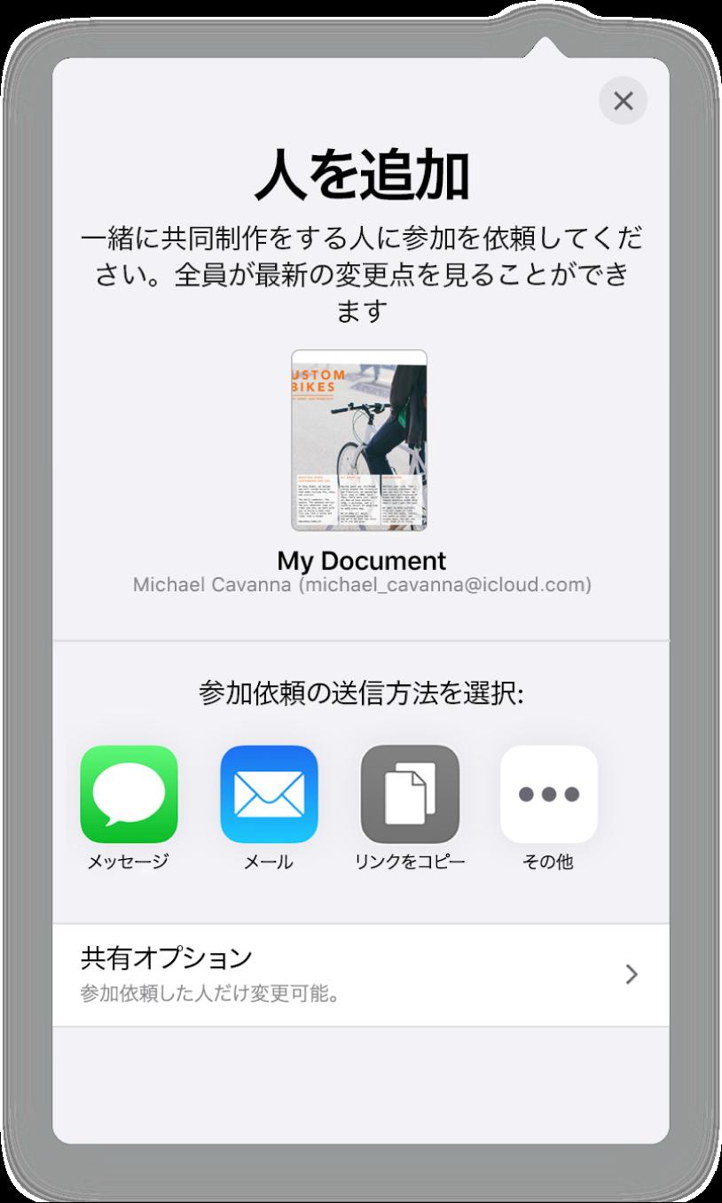 「人を追加」画面。共有されているスプレッドシートの写真が表示されています。その下には、メール、「リンクをコピー」、「詳細」など、参加依頼を送信する方法のボタンがあります。下部には「共有オプション」ボタンがあります。