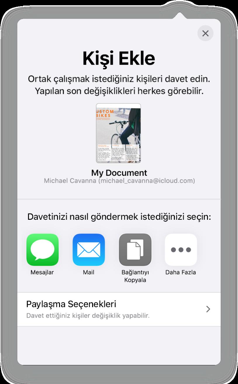 Kişi Ekle ekranı, paylaşılacak hesap tablosunun bir resmini gösteriyor. Onun altında Mail, Bağlantıyı Kopyala ve Diğer de dahil olmak üzere çeşitli davet gönderme yolları için düğmeler var. En altta Paylaşma Seçenekleri düğmesi bulunuyor.
