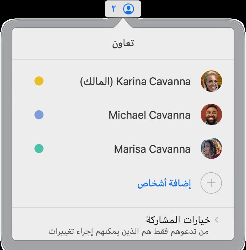 قائمة التعاون تعرض أسماء الأشخاص المتعاونين على العرض التقديمي. تتوفر خيارات المشاركة تحت الأسماء.