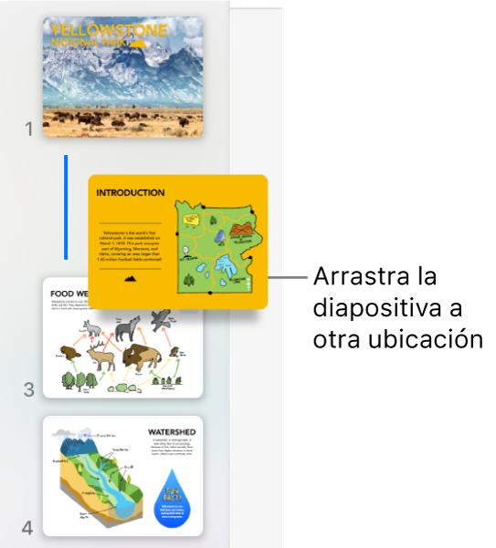El navegador de diapositivas con la miniatura de una diapositiva que se reordenó y una línea a la izquierda.