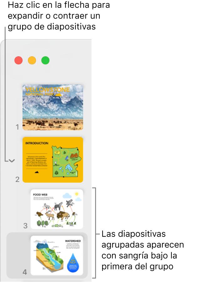 El navegador de diapositivas mostrando diapositivas con sangría.