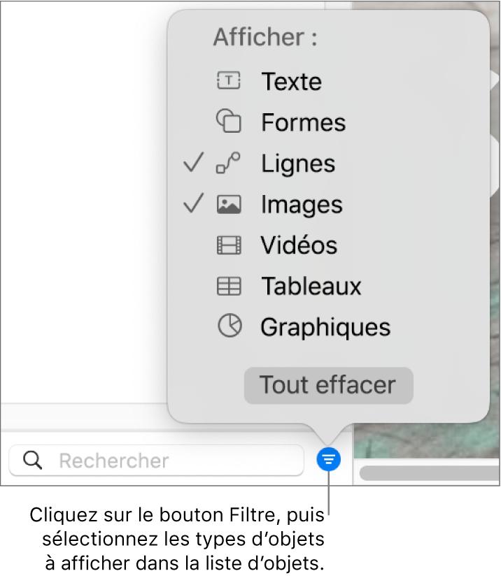 Le menu contextuel Filtrer ouvert, avec les types d'objets qui peuvent être compris dans la liste (texte, formes, lignes, images, vidéos, tableaux et graphiques).