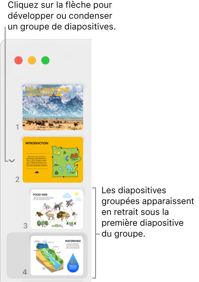 Navigateur de diapositives affichant des diapositives en retrait.