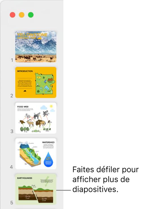 Le navigateur de diapositives avec cinqdiapositives affichées verticalement par ordre séquentiel, et la possibilité de faire défiler vers le bas pour afficher d'autres diapositives.