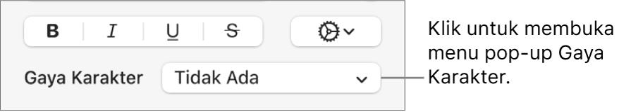 Menu pop-up Gaya Karakter di bawah kontrol untuk mengubah gaya teks dan warna.