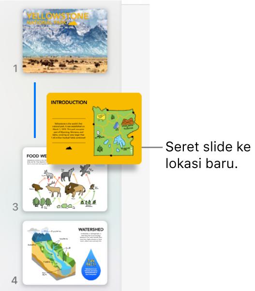 Navigator slide menampilkan gambar mini slide yang diurutkan ulang dengan garis di sebelah kiri.