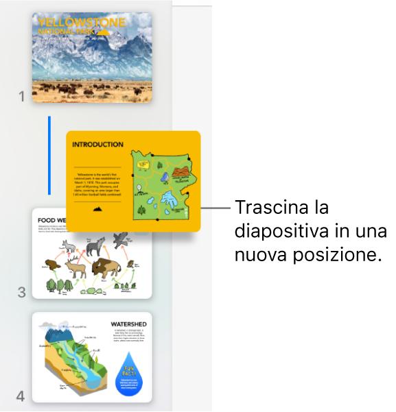 Il navigatore diapositive che mostra la miniatura di una diapositiva riordinata e una linea sulla sinistra.