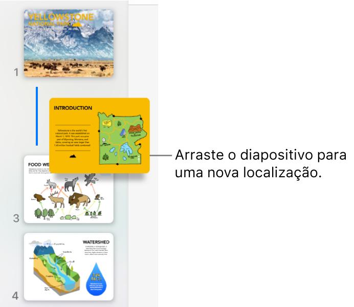 O navegador de diapositivos com uma miniatura de diapositivo reordenada e uma linha à esquerda.