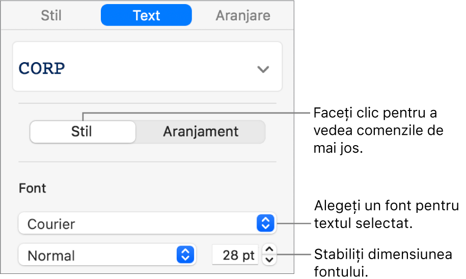 Comenzi de text din secțiunea Stil a barei laterale pentru configurarea fontului și a dimensiunii fontului.