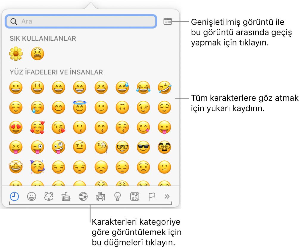 İfadeleri, en altta farklı türde simgeler için düğmeleri ve tam Karakterler penceresini göstermek için bir düğme belirtimini gösteren Özel Karakterler açılır penceresi.