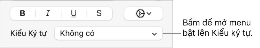 Menu bật lên Kiểu ký tự ở bên dưới các điều khiển để thay đổi kiểu và màu văn bản.
