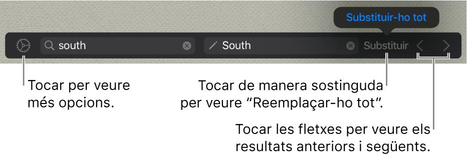 Controls per buscar i substituir text.